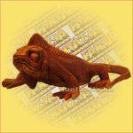 Leguán/Iguana faragvány kicsi