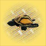 Teknőc homokállat