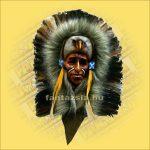 Indián maszk tollas  C