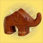 Elefánt Figura Sono fa