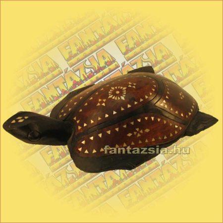 Teknős lomboki kicsi B