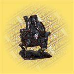 Kínai Szent halcsont figura B