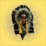 Indián maszk tollas  D