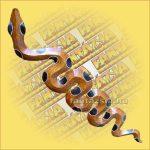 Kígyó nagy